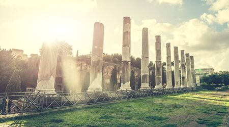 monument: Ancient columns of the Roman temple  near the Coliseum in Rome