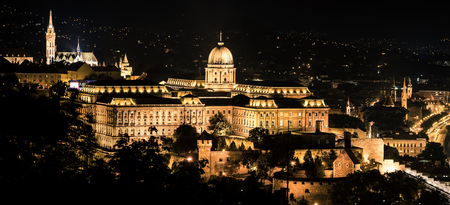 buda: Buda castle in Budapest at night