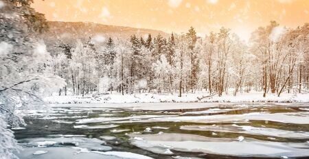 tree  forest: beautiful winter landscape with snow in the mountains of Norway