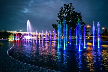 beautiful tree: colorful illuminated musical fountain in Warsaw at dusk