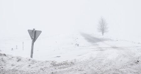 groomed: foggy road with sign and dirty groomed snow and lonely tree in a countryside