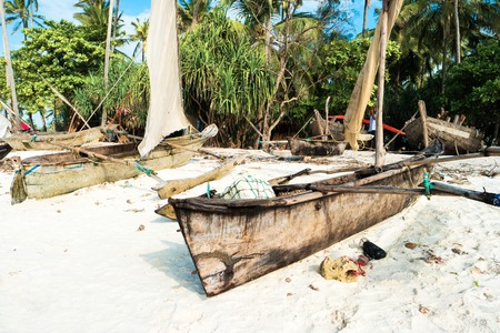 african ancestry: Rustic boats with masts on sandy beach, palms and green bushes nearby, on sunny day