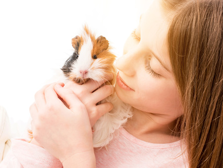 Charming little blonde girl holding guinea pig near her cheek and smiling