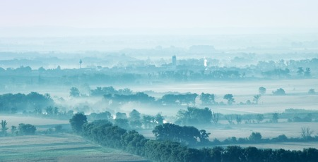 Landscape fields and trees among covered with fog 版權商用圖片
