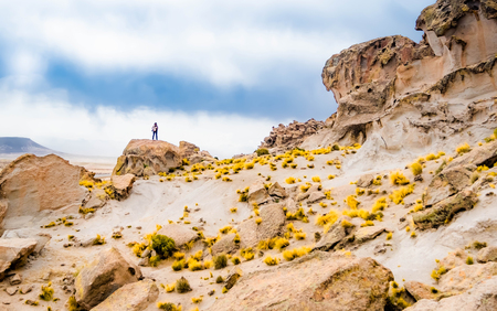 Girl stand at the edge of the rock with raised hands among Bolivian mountains landscape 写真素材