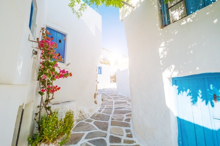 Street with beautiful pink bougainvillea flowers and white house walls. Colourful Greek street in Lefkes, Paros island