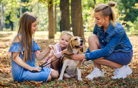 Pretty smiling little girls sitting with a beagle dog in a sunshine autumn park