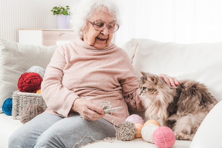 Grandmother knitting and stroking cat on the sofa Stock Photo