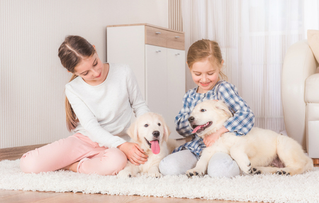 Smiling sisters sitting with cute retriever puppies on carpet Фото со стока