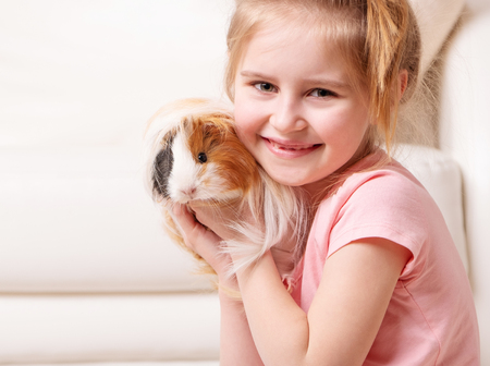 Cute little girk having a lot of fun with peruvian guinea pig