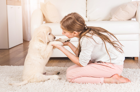 Teenage girl playing with cute retriever puppy at home