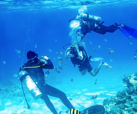 diver swimming underwater near tropical fishes and takes a picture with camera Banque d'images