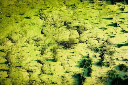 Mysteriously pond with old stumps and snags in front of the forest, top aerial view Stock fotó