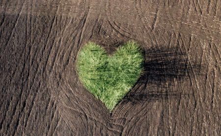 Green trees forming heart on agricultural ploughed field