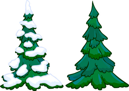 conifer: Cartoon conifer trees with and without snow