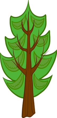 conifer: Illustration of a cartoon conifer tree with light green needles, brown trunk and branches. Isolated. Illustration