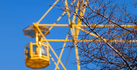 big wheel: Yellow big wheel against the blue sky and branches of a tree.Selective focus.