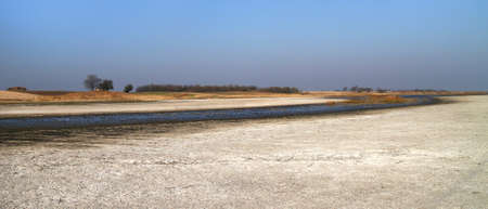 salt marsh: Salt marsh natural reserve Slano kopovo in Serbia Stock Photo