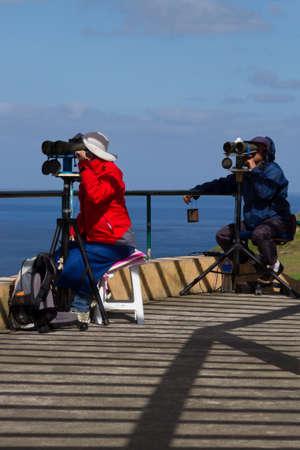 birdwatcher: Two professional whale watchers, Sao Miguel Azores