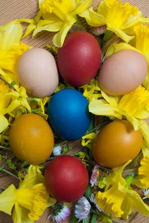 top seven: Seven colored Easter eggs  in yellow flowers