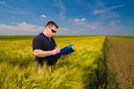 dirtied: Farmer Inspecting   grain on the field and write notes Stock Photo