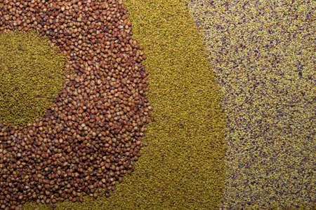 vetch: Various seed ,  alfalfa, grass, millet, vetch as background Stock Photo