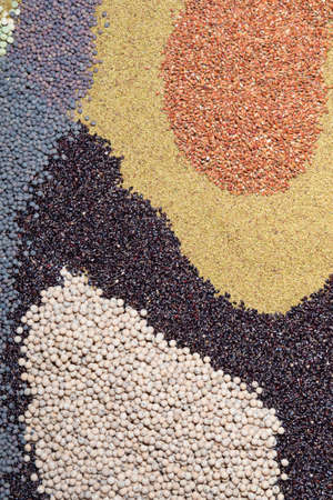 vetch: Various seed , peas, grass, millet, vetch as background