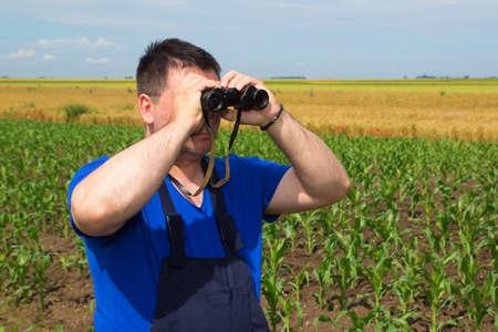 dirtied: Farmer with binoculars observe birds  in corn field