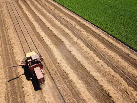 Top view of old harvester reaps grain on the field
