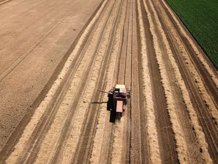 Top view of old harvester reaps grain in summer time