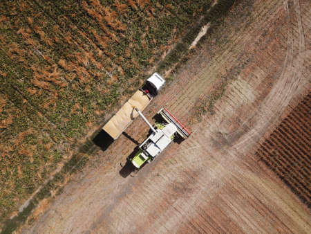 Top view of Combine loading soya bean in the truck 写真素材