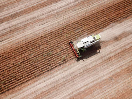 Top view of Combine harvesting genetically modified soya bean