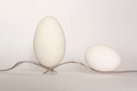 Balance of two white eggs on two forks