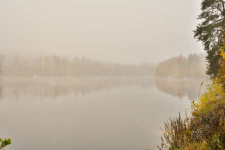 mirrored: Autumn river. Very foggy. Trees are mirrored from river water. Stock Photo