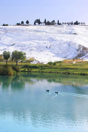 Ducks on the lake, calcified limestone terraces on background, Pamukkale, Turkey Stock Photo
