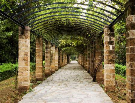 Pergola in Athens, Greece Stock Photo - 14252895