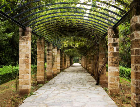 Pergola in Athens, Greece