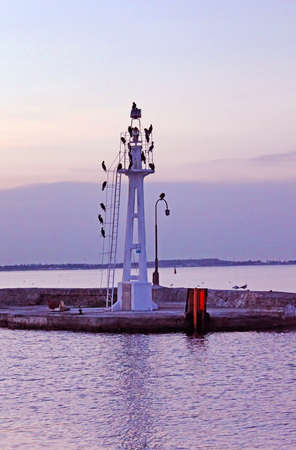 Little lighthouse with seagulls in the evening, Odessa, Ukraine photo