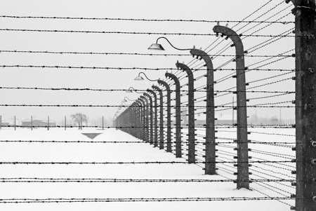 barbed wire fence: Auschwitz camp, Poland