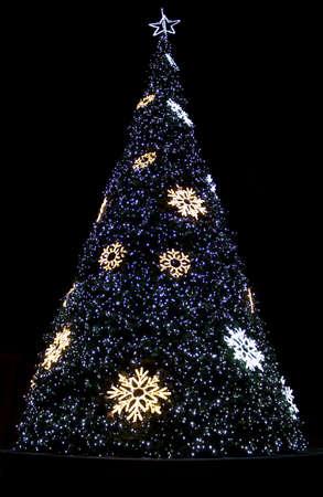 Beautiful shining christmas trees Imagens