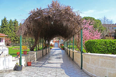 Pergola on the site of Church of St. Mary of Blachernae, Istanbul, Turkey Stock Photo