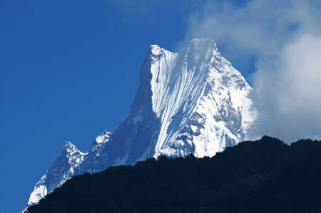 fishtail: Machapuchare or Fishtail peak. it is a mountain in the Annapurna Himal of north central Nepal