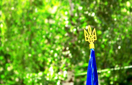 ukrainian flag: Trident (national ukrainian coat of arms) on the top of the Ukrainian flag over green spring foliage