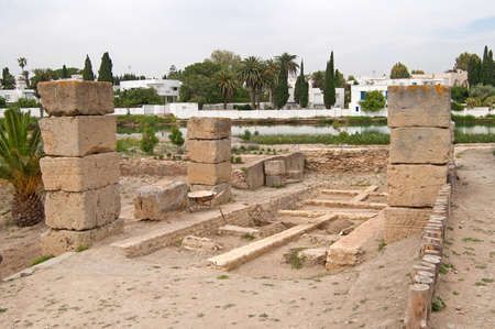 pius: Ruins of military port in Carthage, Tunisia Stock Photo