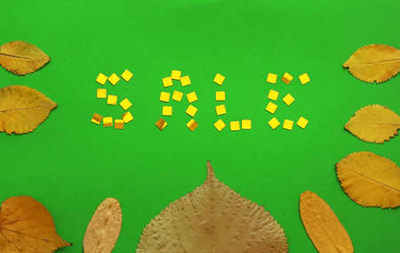 Green background and autumn leaves as a frame and the word SALE is laid out of gold confetti. Autumn and sale concept. Flat lay, top view