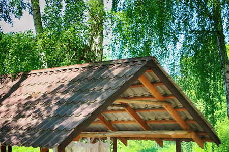 Roof canopy under birch trees in spring forest. Place for picnic 版權商用圖片