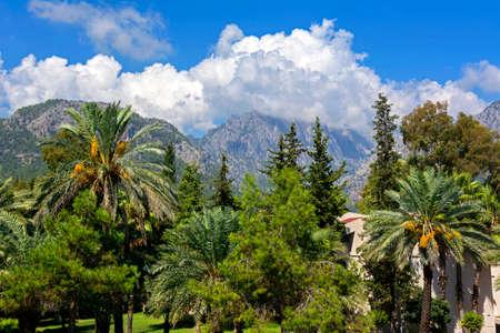Turkey Kemer mountains palm trees