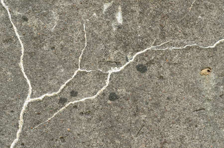 crack: Texture of dilapidated concrete with white veins.