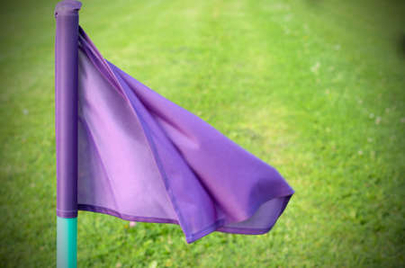 Lilac flags on the green grass of a football playing field Stock Photo