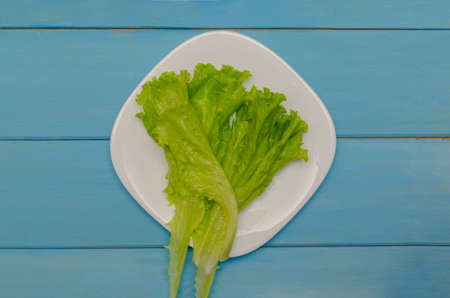 Salad leaves on a white plate with fork and knife. Blue wooden background. The concept of healthy eating Reklamní fotografie